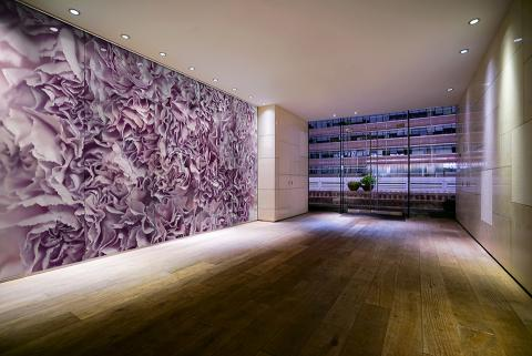 Feature wall in ViviSpectra Zoom glass with Carnations interlayer