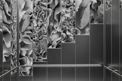 Elevator Interior - Carnations Greyscale