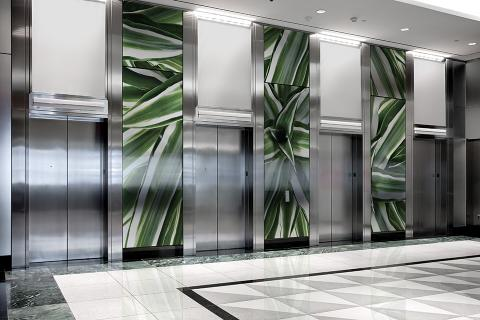 Elevator Lobby Walls with Dracena Fragans interlayers