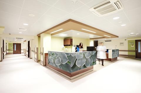 Reception desk in ViviSpectra Zoom glass with Echeveria Elegans interlayer