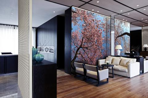 Feature wall in ViviSpectra Zoom glass with Cherry Tree Canopy interlayer