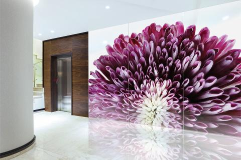 Feature wall in ViviSpectra Zoom glass with Spider Mum interlayer
